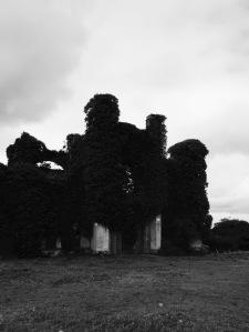 Moydrum Castle