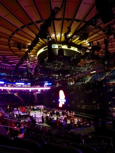 MSG June 25 Main Stage (Adam Side) From Side