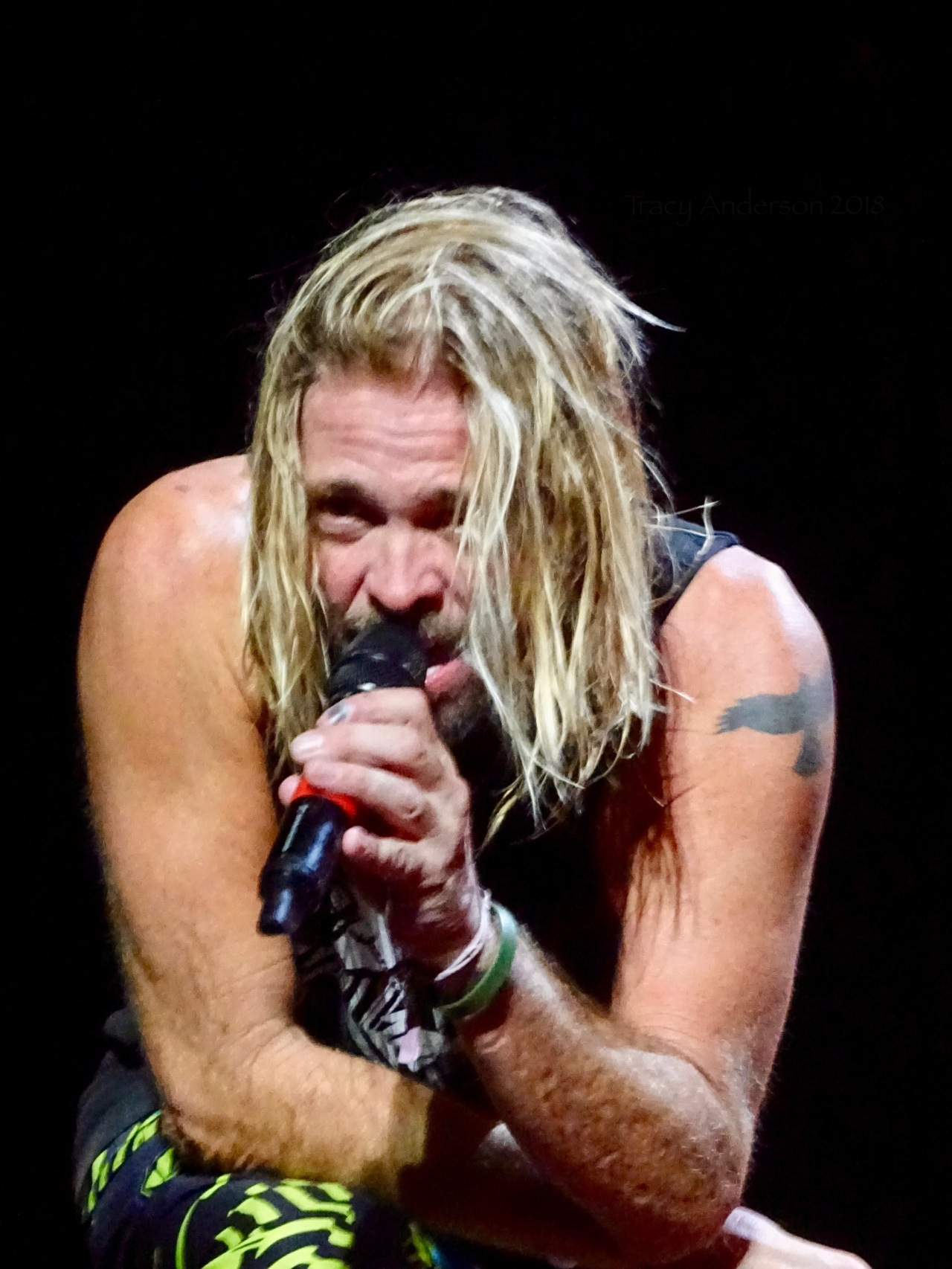 Taylor Hawkins Close Up Foo Fighters Concrete and Gold Tour Rogers Place Edmonton Oct 22 2018