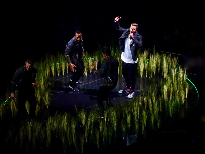 Justin Timberlake Grass 2 Rogers Place Feb 6 2019