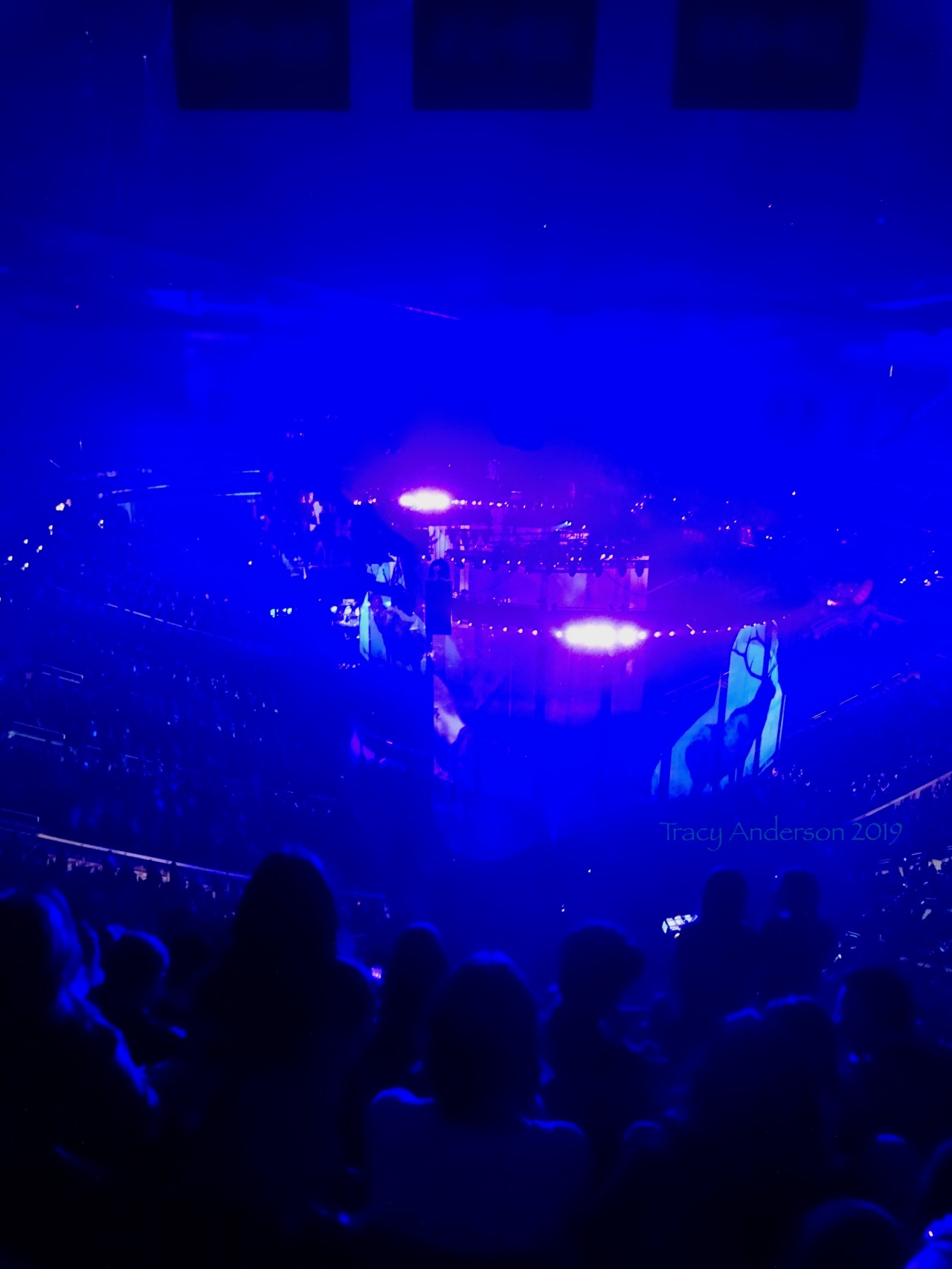 Justin Timberlake Man Of The Woods Tour Stage Deer Rogers Place Feb 6 2019
