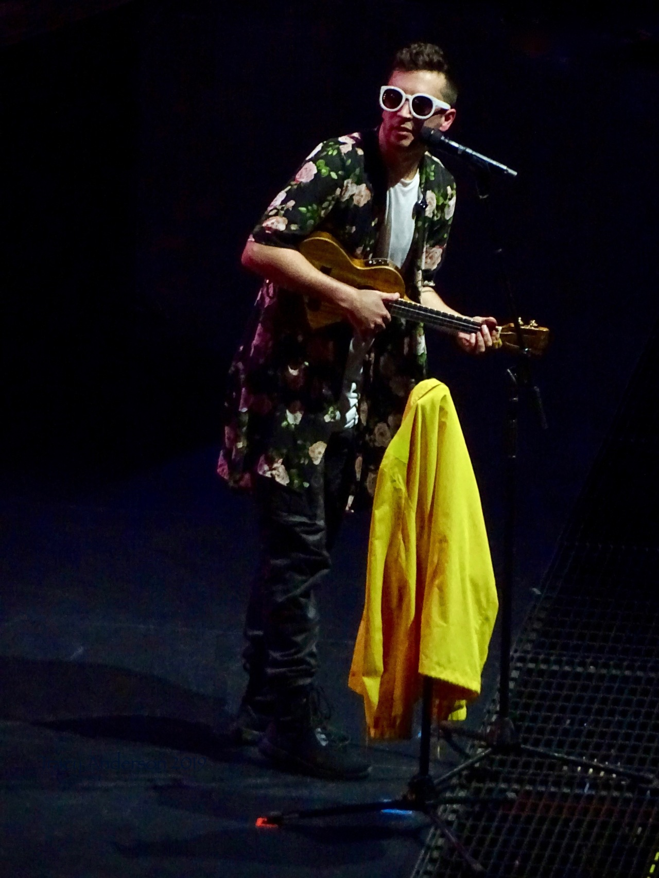 Tyler Joseph Ukulele Twenty One Pilots Scotiabank Saddledome Calgary May 14 2019