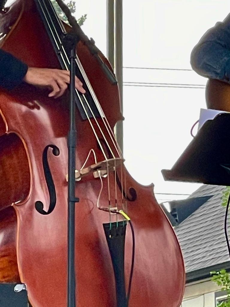 Edmonton Folk Music Festival 2021 Post Script Bass
